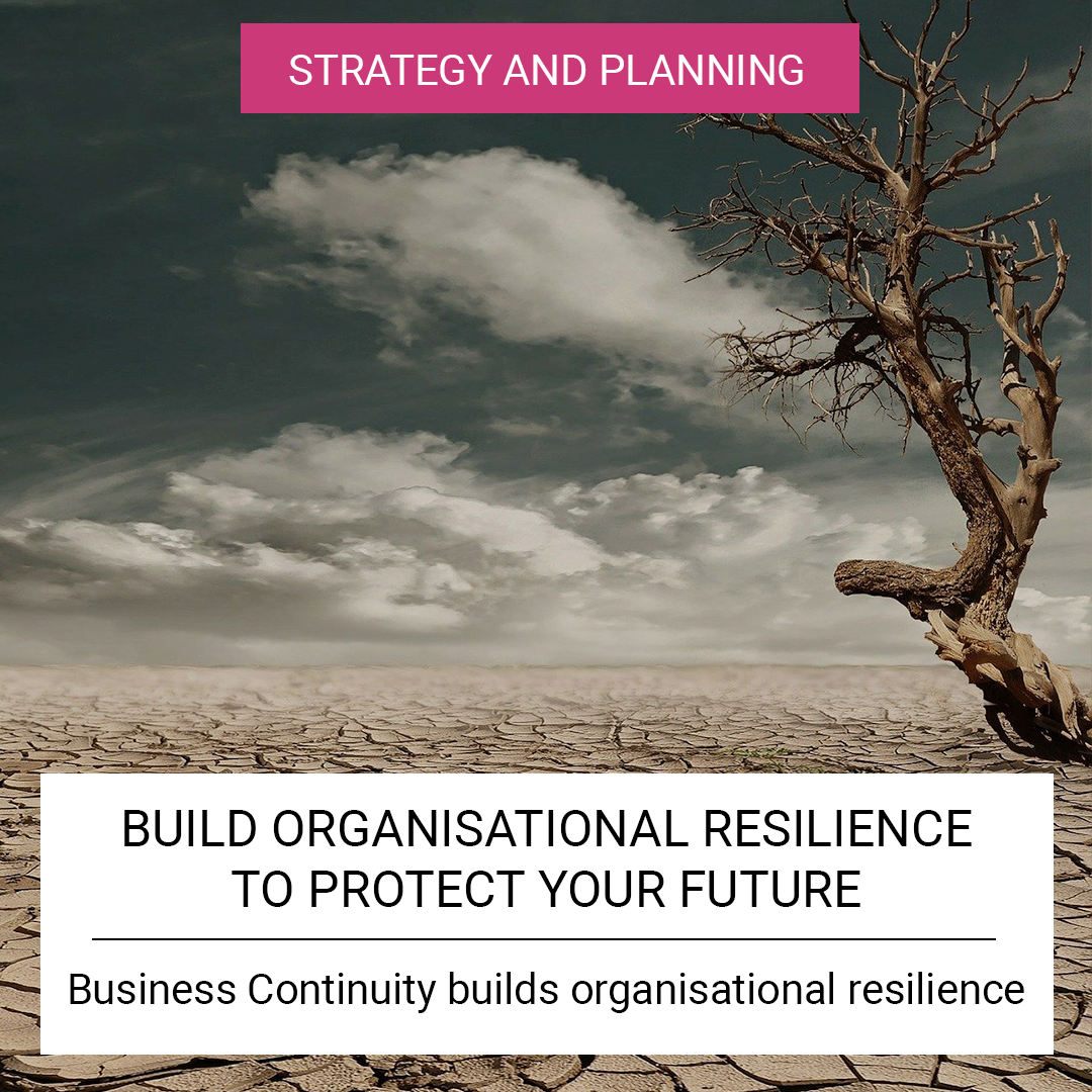 Build Organisational Resilience